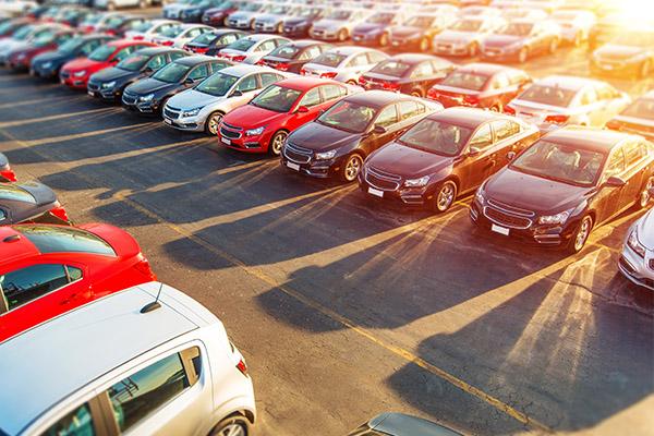 Car Dealer Stock